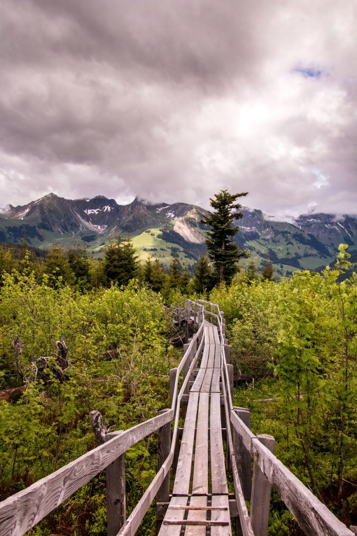 Narrow wooden walkway over swamp with mountains in the background